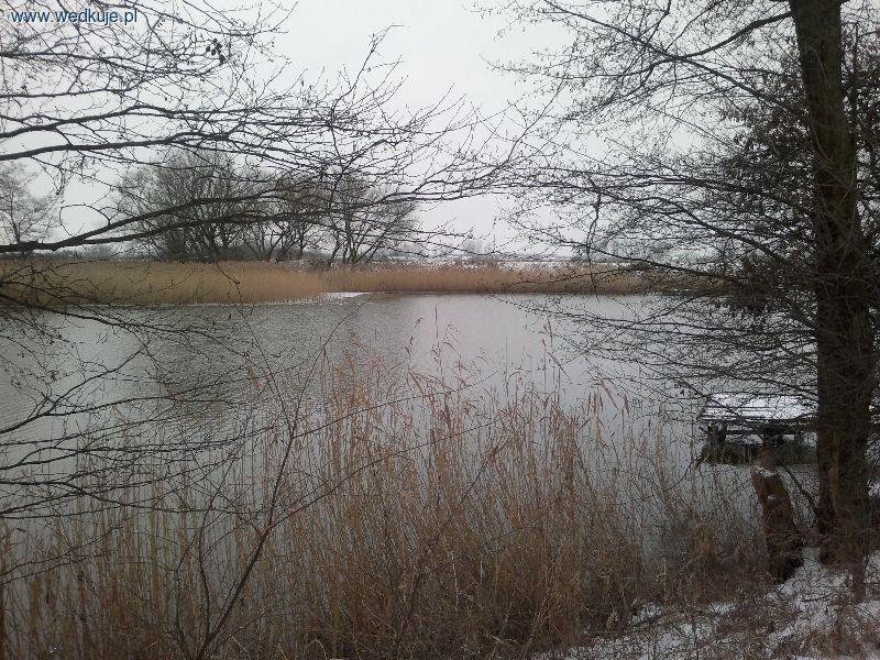 21.01.2014 - Jezioro Piwoniñskie bez lodu