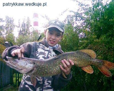 3,45 kg 11 latek  Kana³ pomorzany  w Szczecinie
