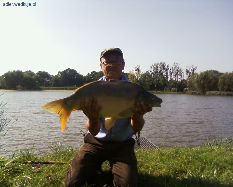Nasze najpiêkniejsze rybki sezonu 2014.