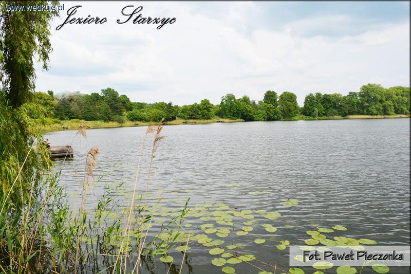 Jezioro Starzyc