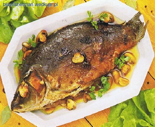 Przepisy Kulinarne Bluefishermana Porady Wedkujepl