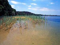 Jezioro ¦wiêcajty , okolice miejscowo¶ci Ogonki