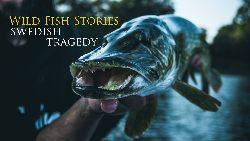 Wild Fish Stories - Swedish Tragedy