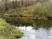 Rzeka Pas³êka