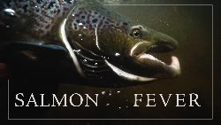 Wild Fish Stories - Salmon Fever - ca³y film online