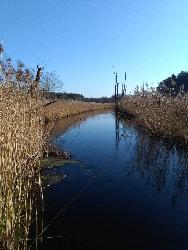 Protest- rzeka Kaczawa.