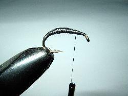 Hydropsyche z podk³adu do sznura muchowego