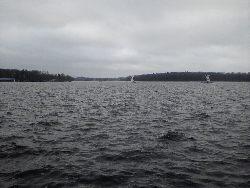 Gdzie s± ryby w du¿ych rzekach. Przegl±d miejsc.