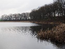 Zarybienie - Jezioro D¼wierzno.