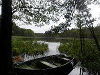 Jezioro Rudzianek ko³o Gostycyna
