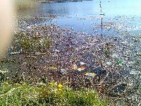 ¦mieci i zanieczyszczenia