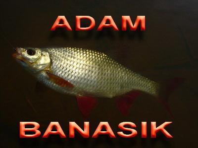Adam Banasik