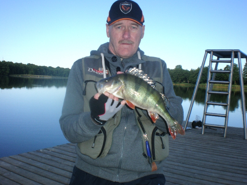 Garbusek 41 cm z jeziora Zaleskiego